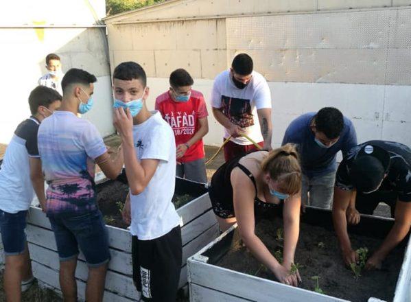 Mi huerto ecológico, un proyecto acogido con entusiasmo